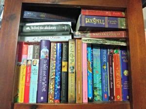 tall bookshelf 1