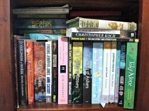 tall bookshelf 2